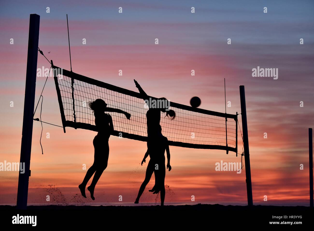 Silhouettes Of Female Volleyball Players Practicing
