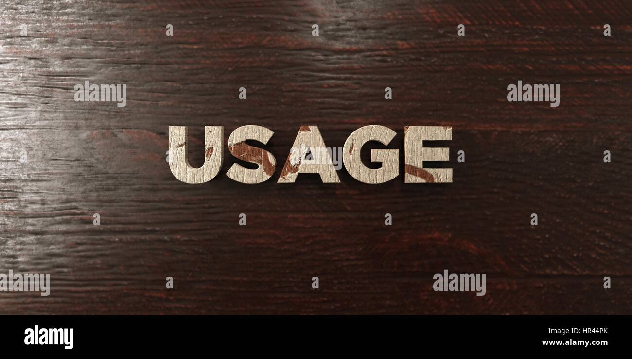 Usage - grungy wooden headline on Maple  - 3D rendered royalty free stock image. This image can be used for an online - Stock Image