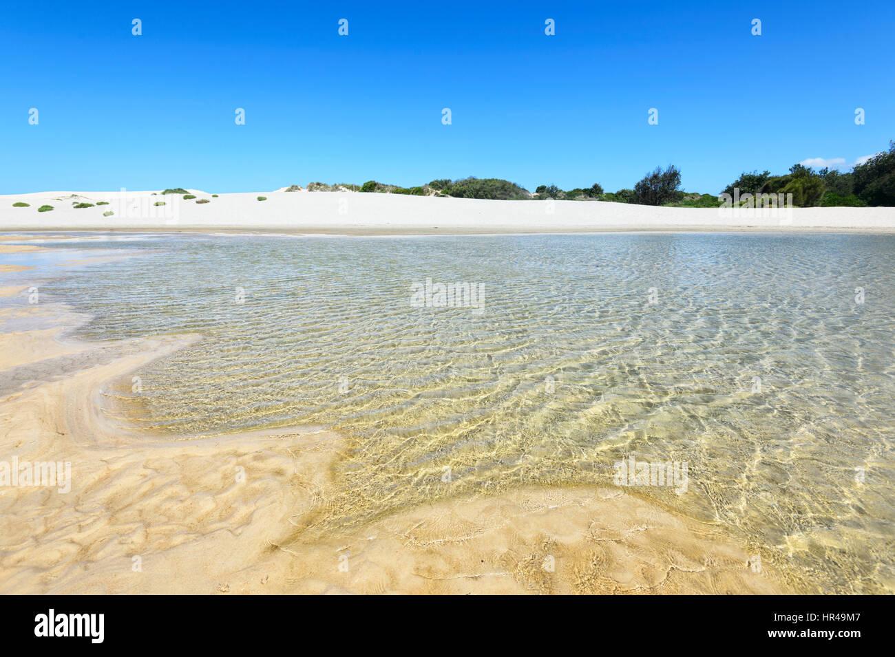 Sand dunes at Conjola Beach, Shoalhaven, South Coast, New South Wales, NSW, Australia - Stock Image