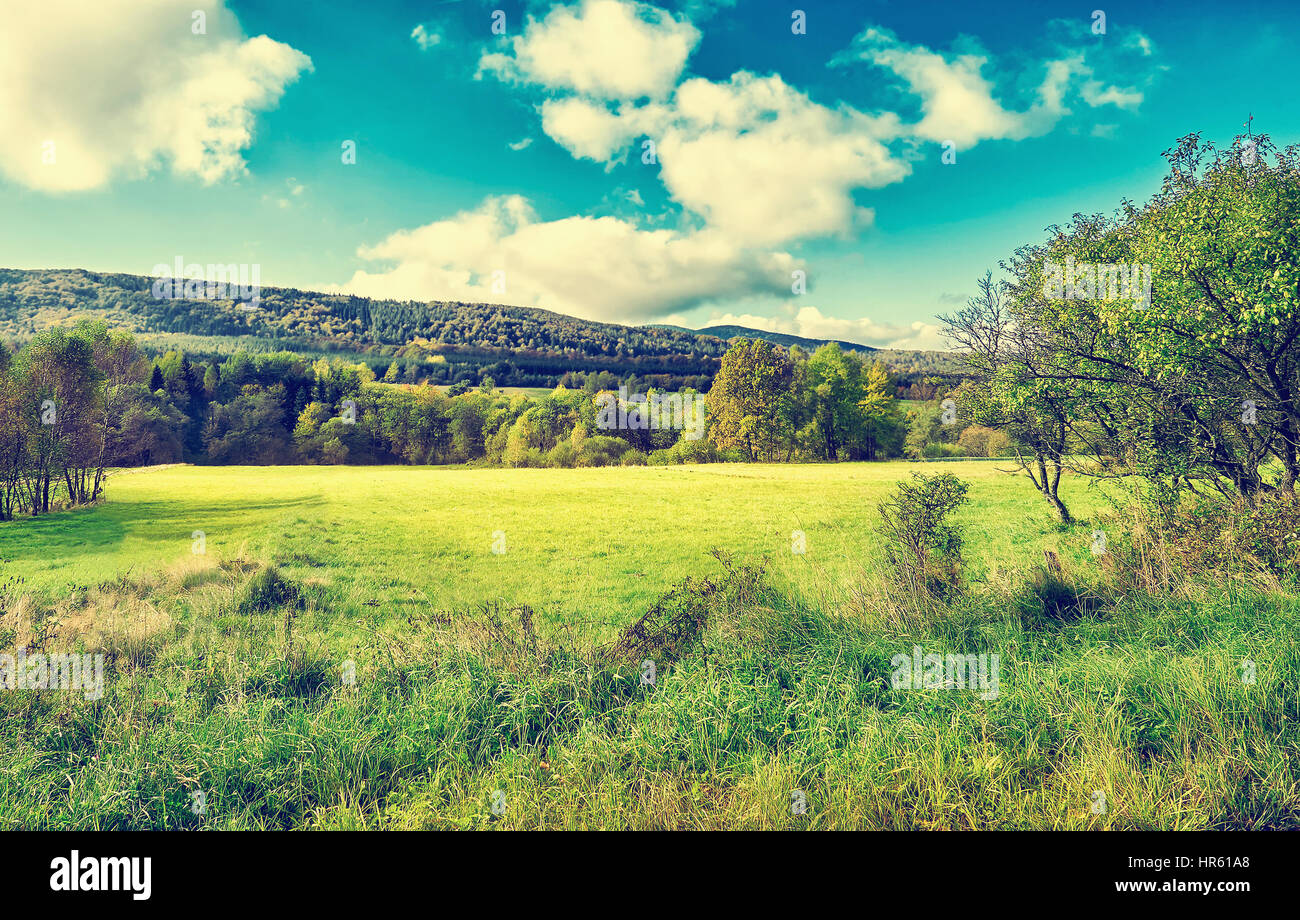 Agricultural meadow on hillside in morning light. Ferest in the background. Autumn mountain landscape. Majestic Stock Photo