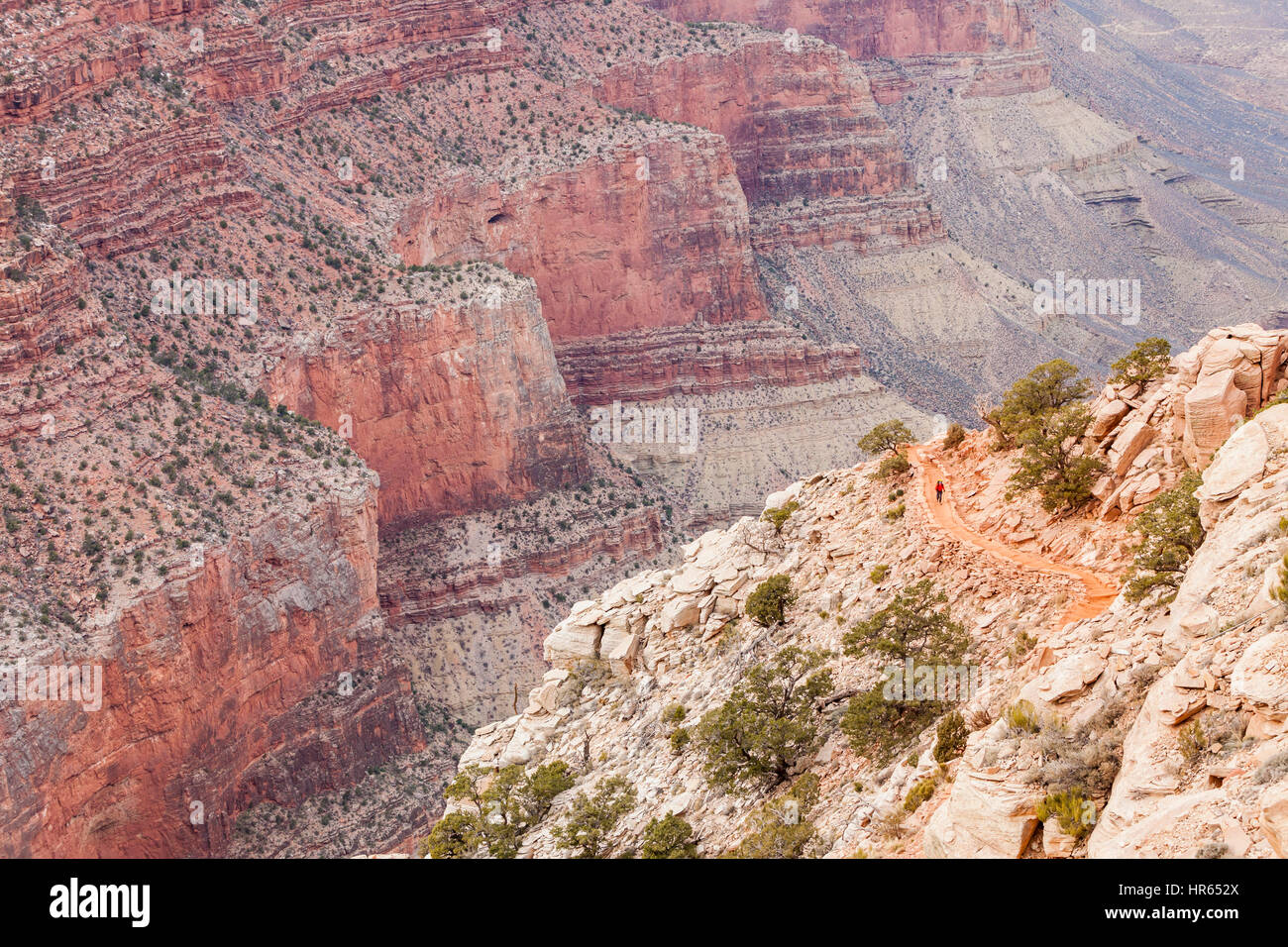 A lone backpacker heading up the south Kaibab trail on the Grand Canyon's south rim, Grand Canyon National Park, - Stock Image