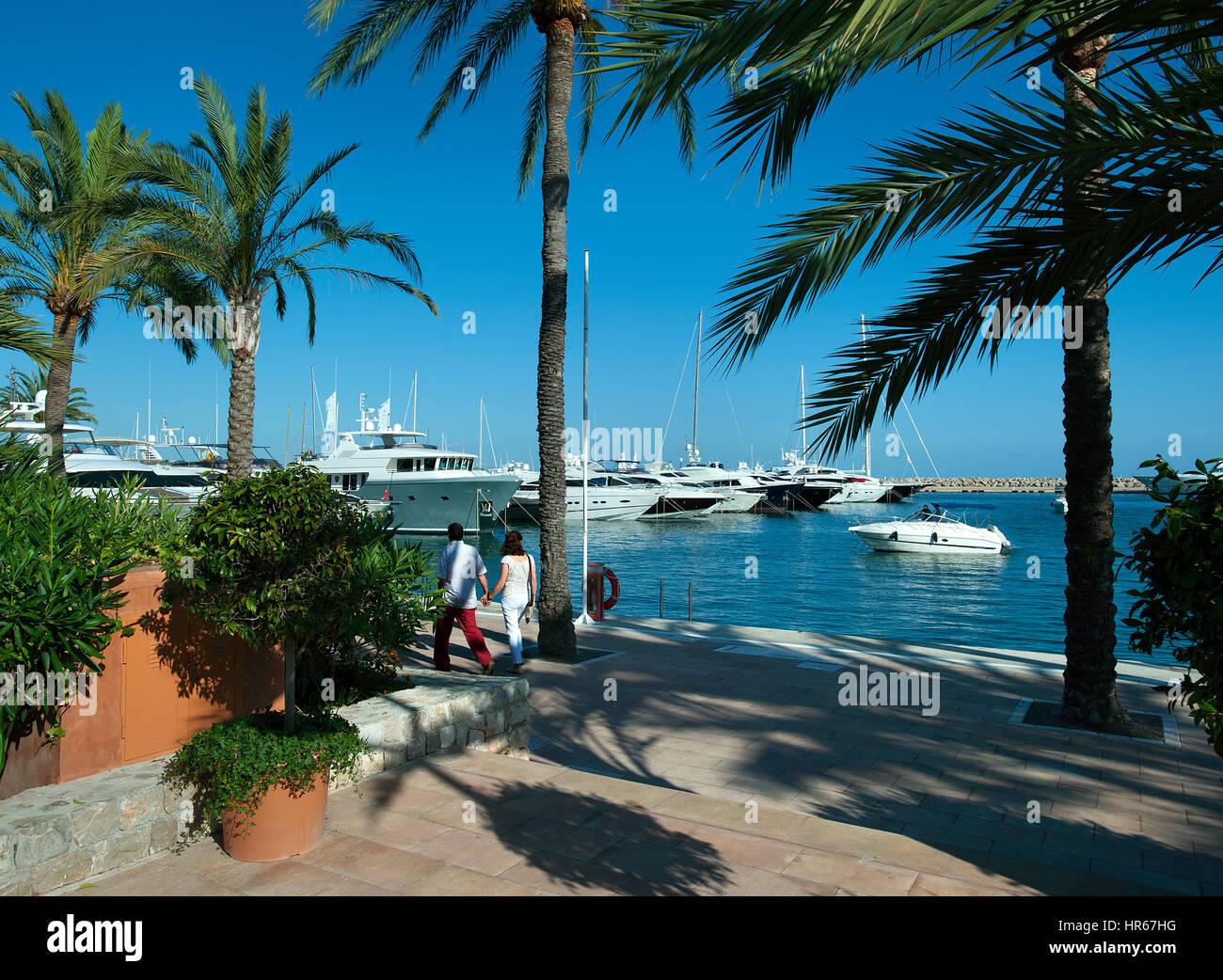 Portals Nous Marina, Mallorca, Balearics, Spain - Stock Image