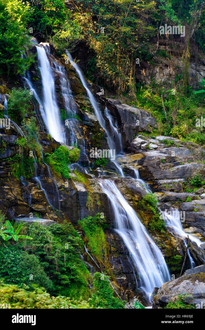 Close-stream waterfall which flows swiftly through severe cliff rocks with ferns, moss covered trees. - Stock Image