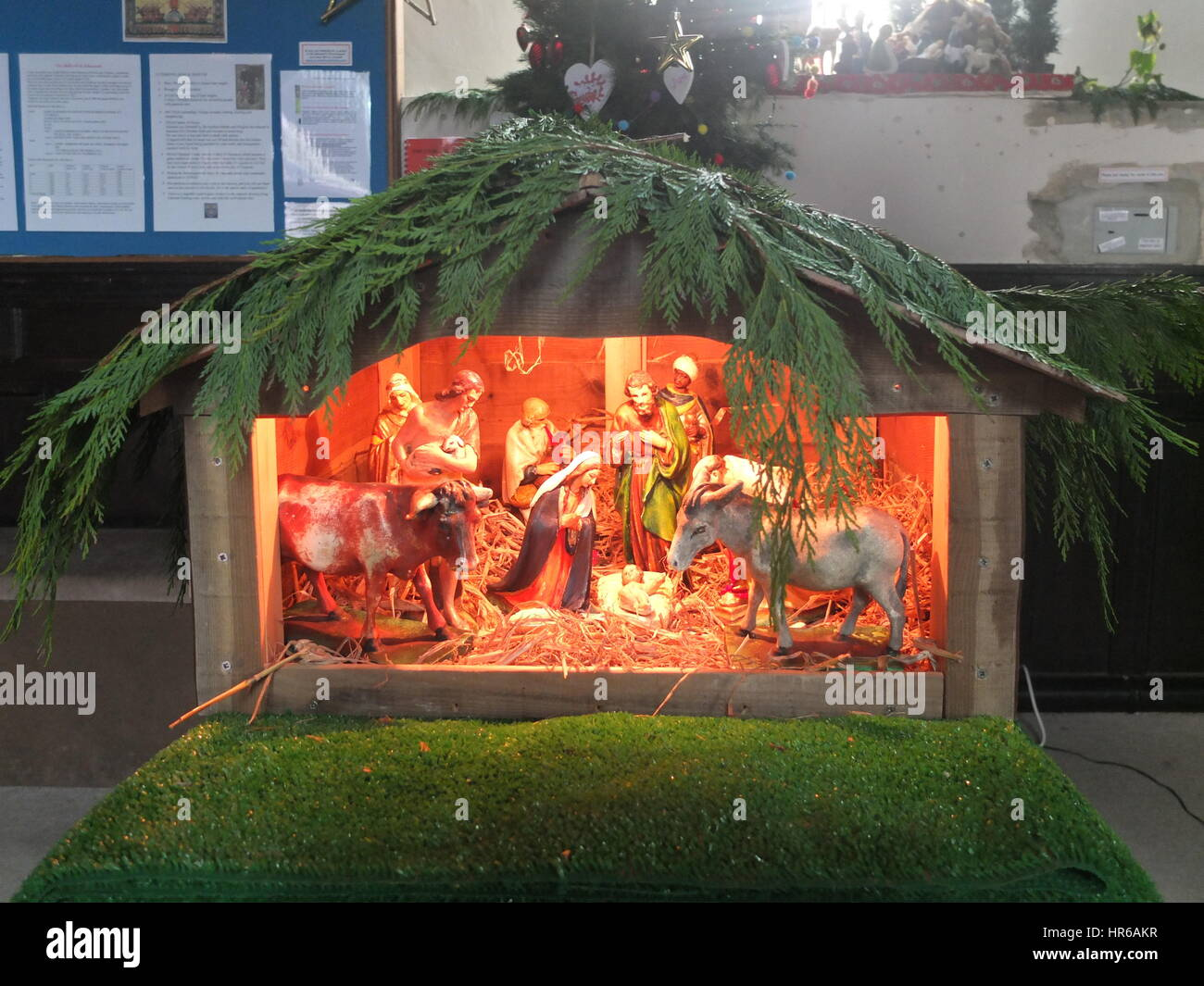An illuminated model nativity scene draped with evergreens in a church at Christmas (St. Edmund's Church, Castleton, Stock Photo