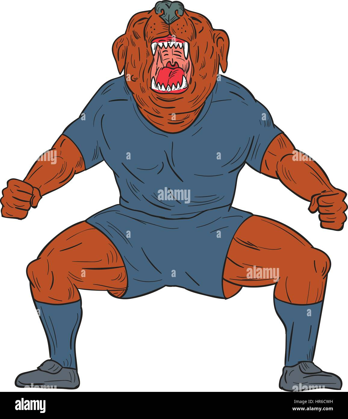 Illustration of a bulldog footballer with knees bent and mouth wide open celebrating haka victory goal viewed from - Stock Vector