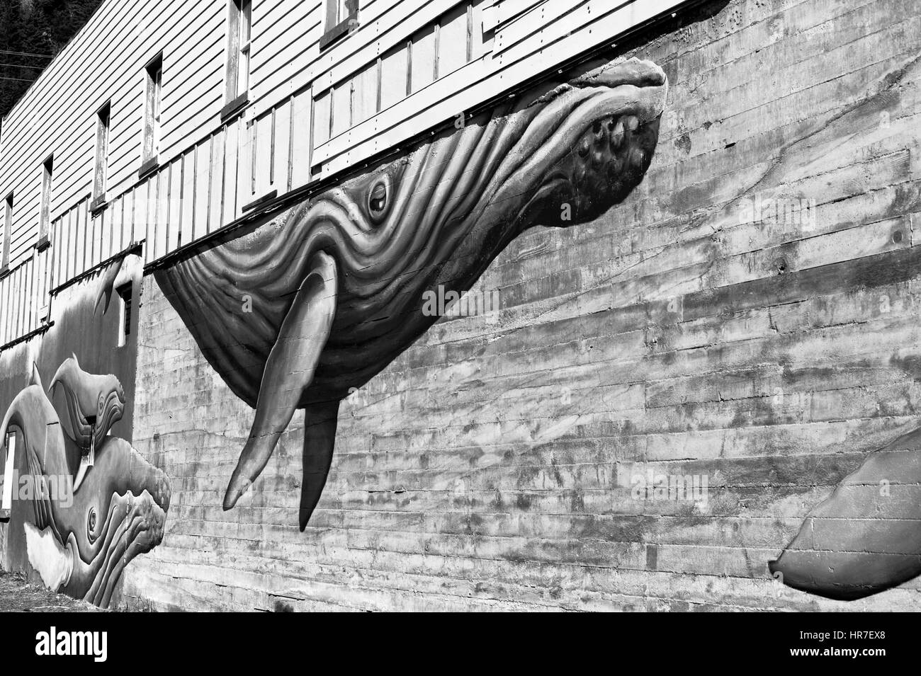 An enormous mural of whales adorns the side of a building near the sea life center in Seward Alaska. - Stock Image