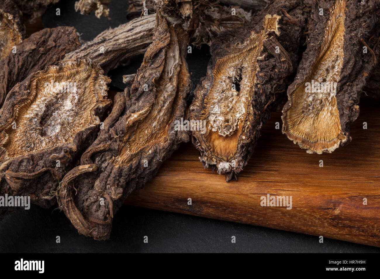 Burdock (Arctium) - medical plant. Dried roots oil are used for the hair treatment and care. - Stock Image