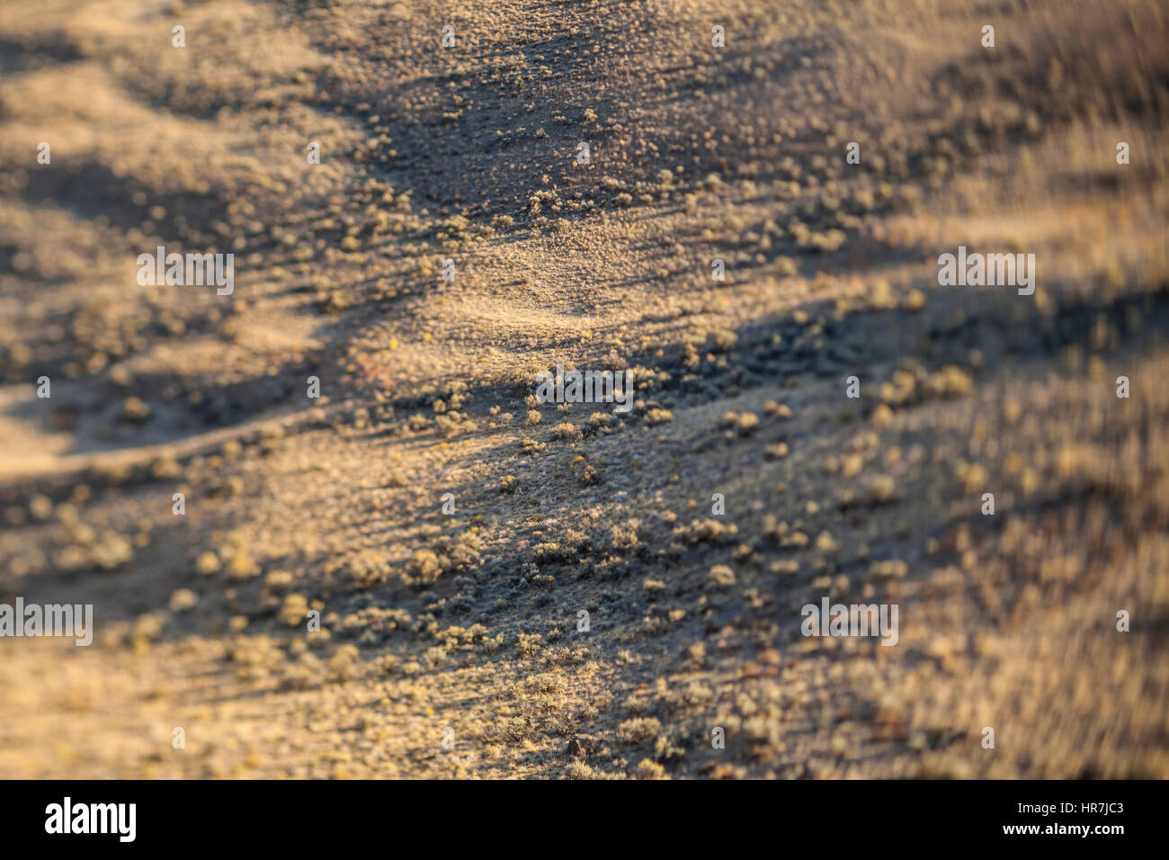 A valley floor covered by sage and grass in Echo Basin near Vanatge, Washington, USA. - Stock Image