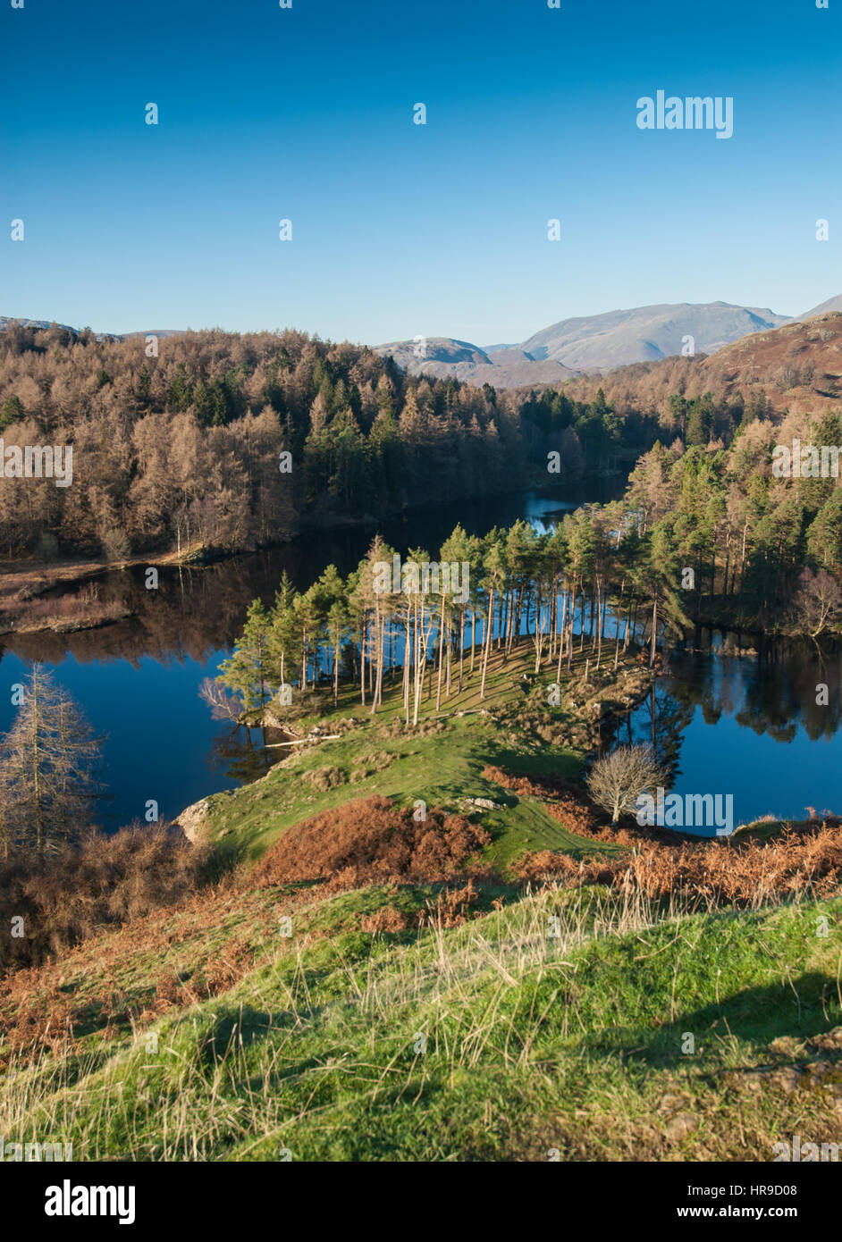 Elevated view across the landscape of Tarn Hows, Langdale, The Lake District.  Cumbria, England, UK. - Stock Image