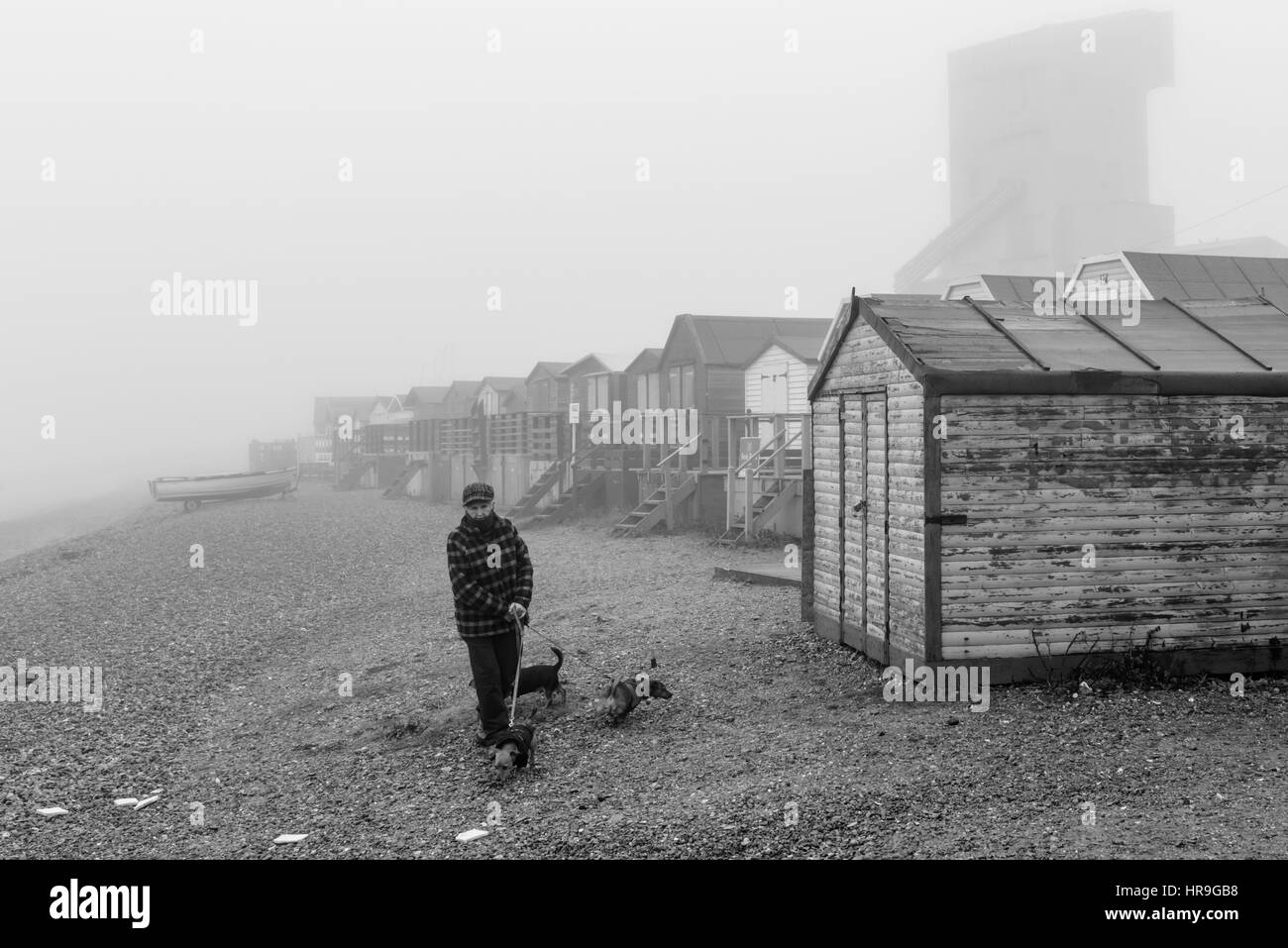 A mature woman walking her three dogs on the beach on a foggy day. - Stock Image