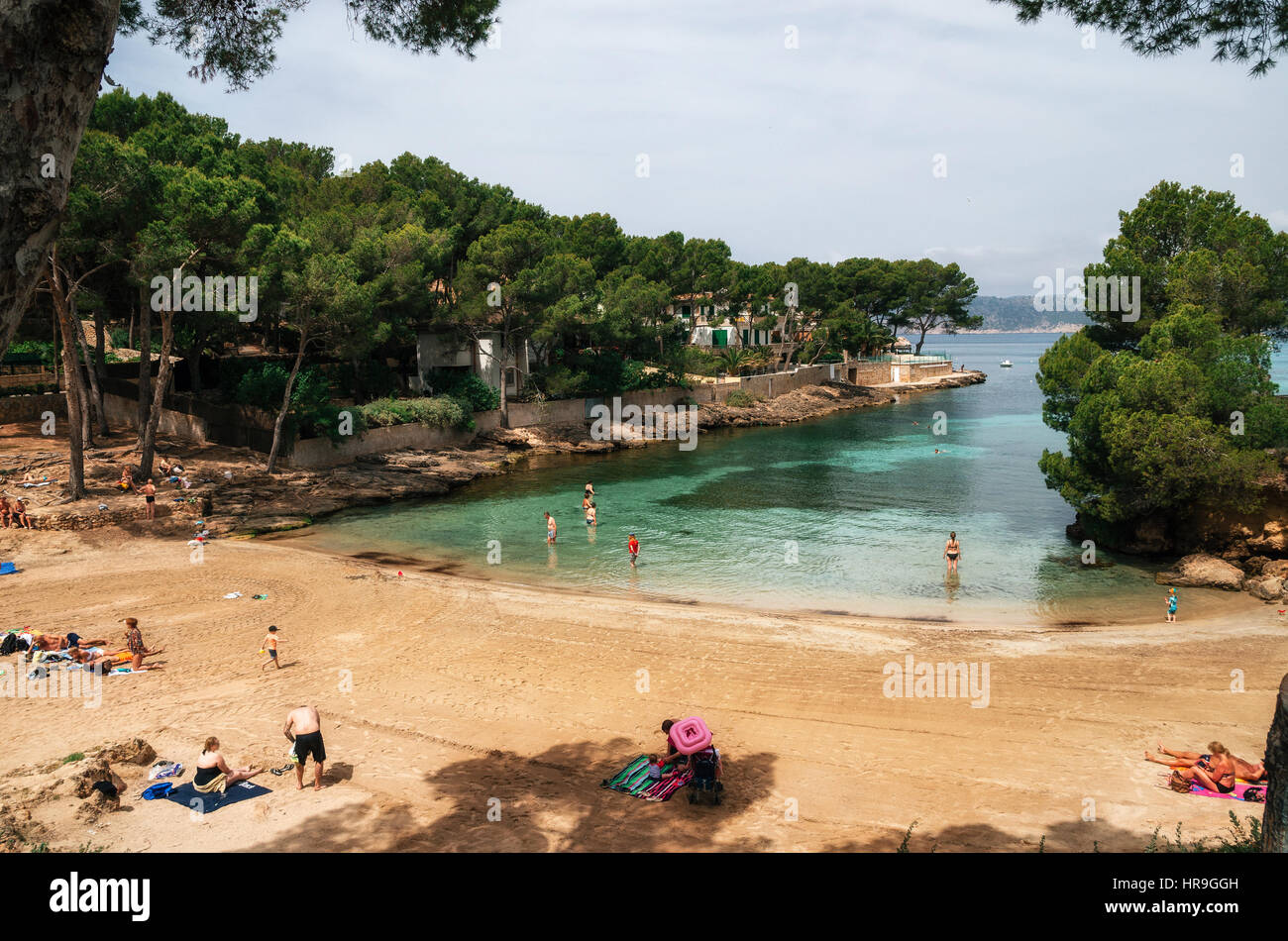 Little Pellicer Beach in Santa Ponsa with green azure water, bathers and vacationers in a sunny day. Cozy bay with - Stock Image