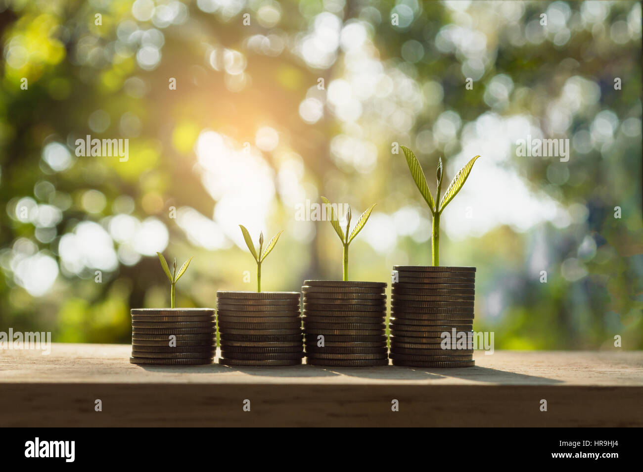 silver coin stack and tree in concept of growth business background. - Stock Image