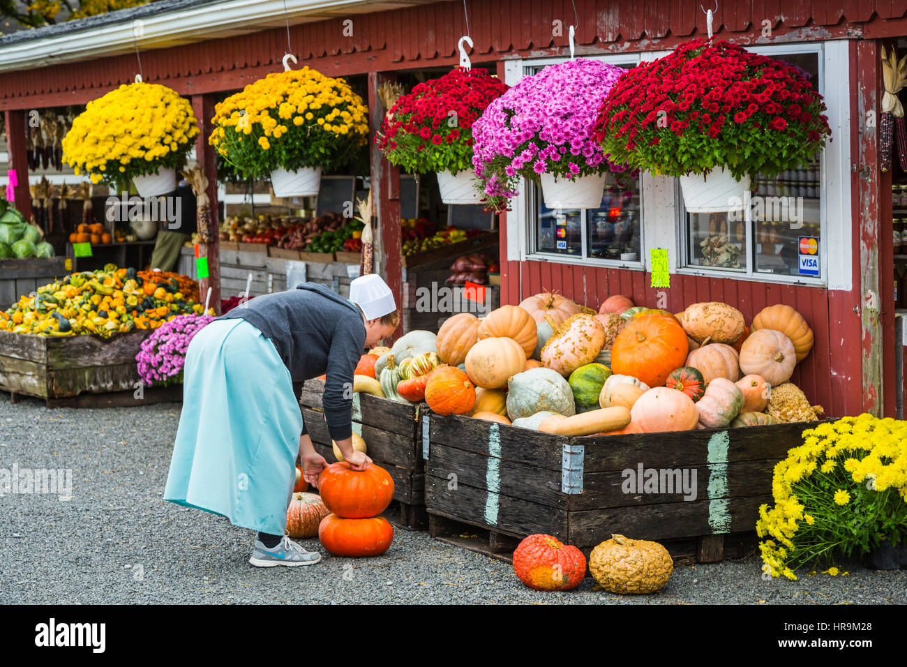 A farm produce market selling pumpkins and gourds near Walnut Creek, Ohio, USA. - Stock Image