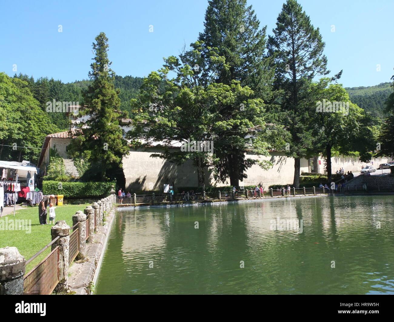 fish pond at Vallombrosa monastery, Tuscany, Italy - Stock Image