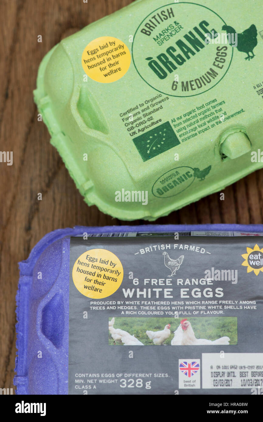 Sticker on a box of Free range eggs explaining hens housed in barns for their welfare during bird flu outbreak in - Stock Image