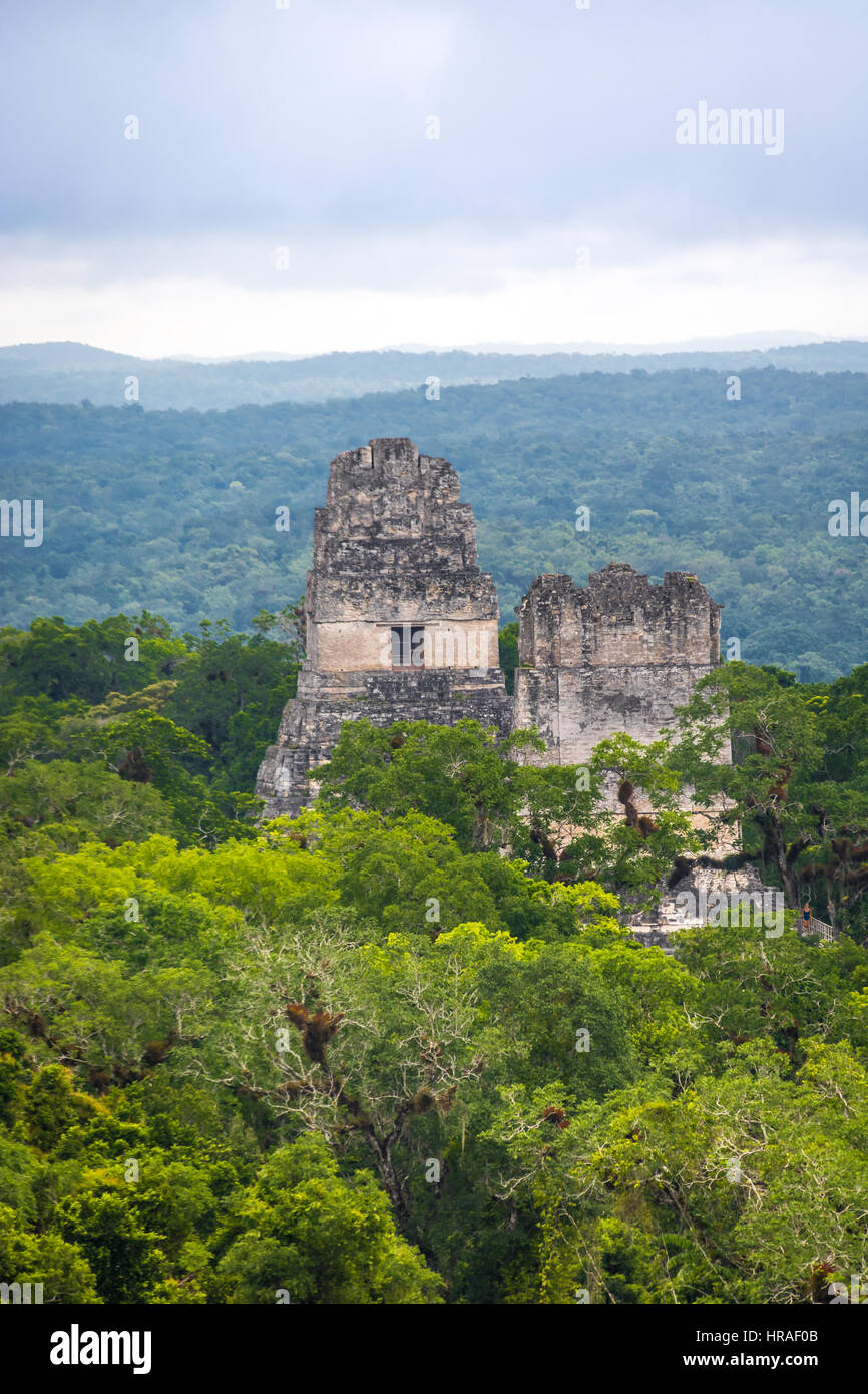 Top of mayan temples at Tikal National Park -Guatemala - Stock Image