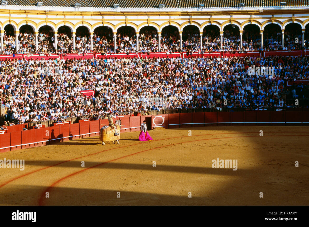 Bull Fight in the Plaza de toros de la Real Maestranza de Caballería de Sevilla, Seville, Spain - Stock Image