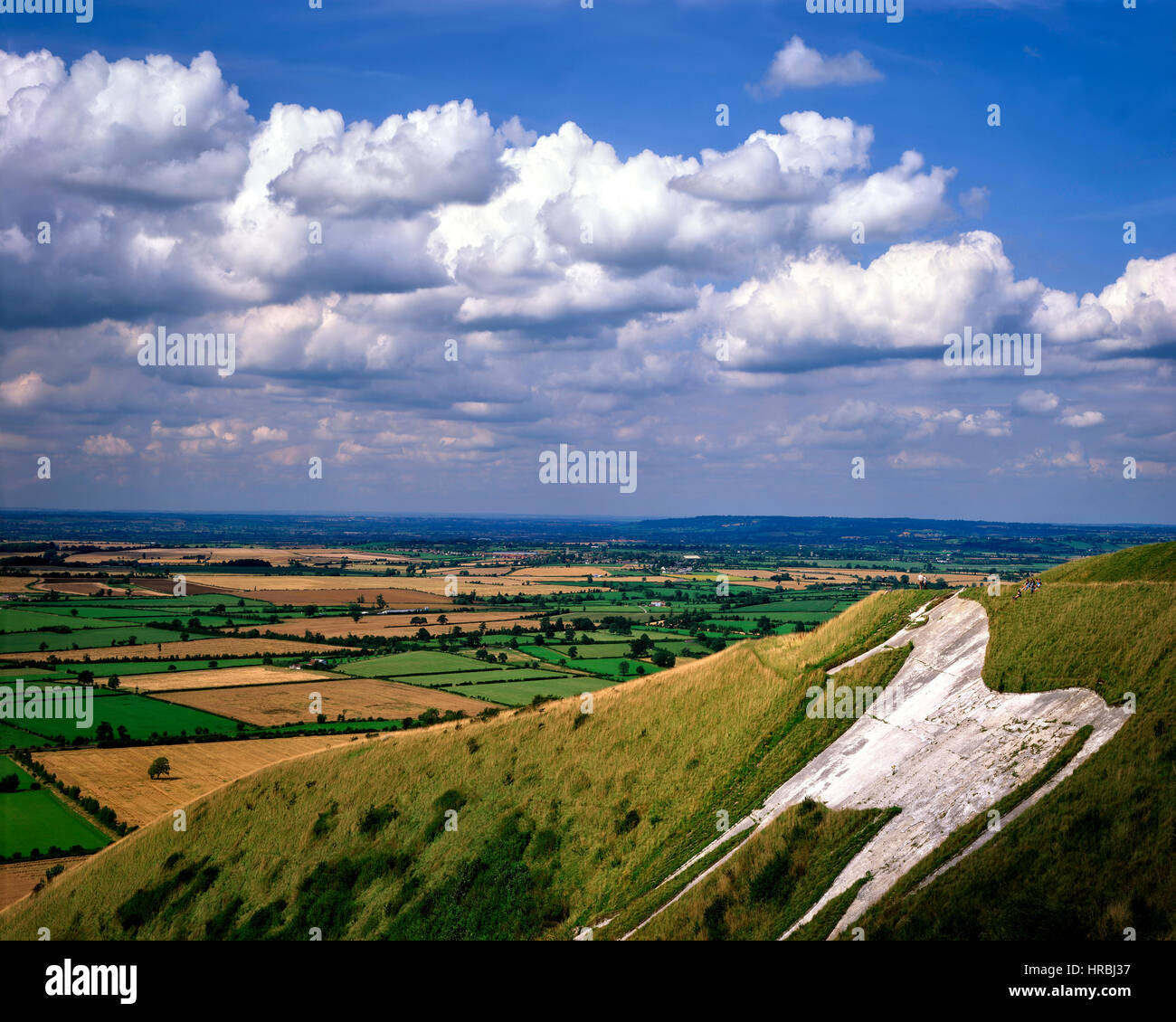 GB - WILTSHIRE:  Westbury White Horse Stock Photo