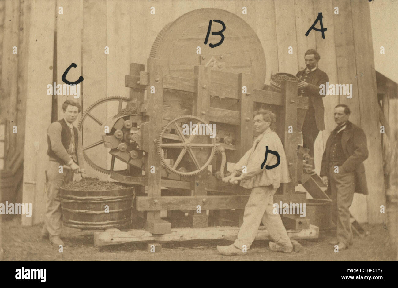 1860s antique industrial occupational photo of a primitive grape pressing machine and explanation of the process. - Stock Image