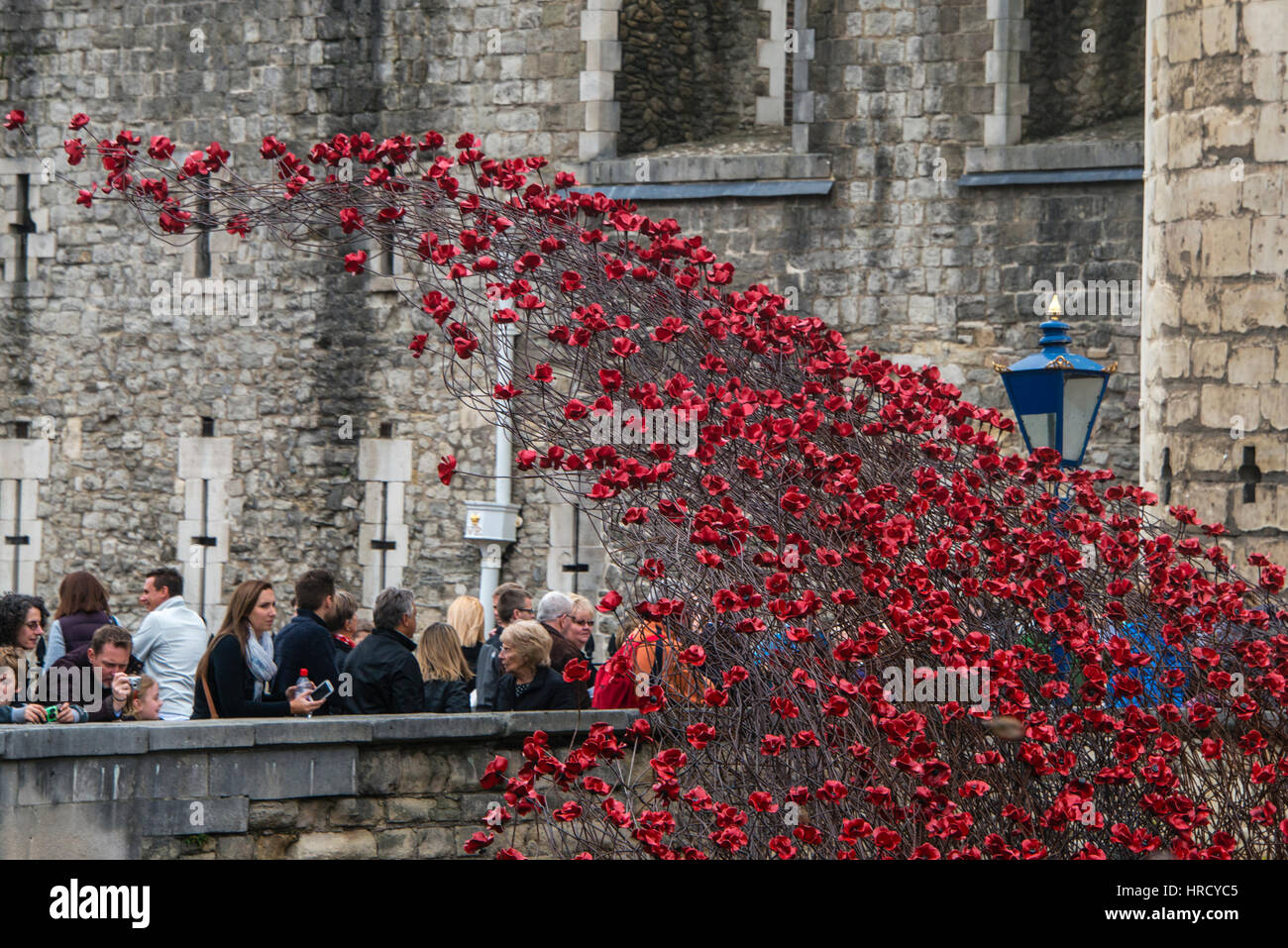 A Waterfall of poppies. 'Blood Swept Lands and Seas of Red'. Close up of the 888,246 ceramic poppies marking - Stock Image