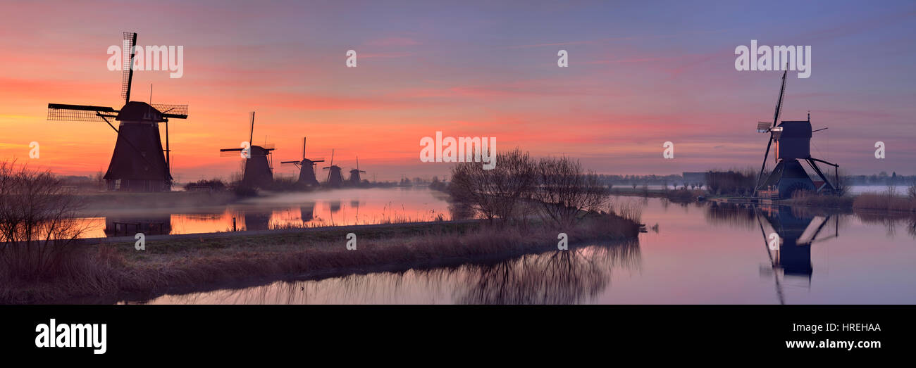 Traditional Dutch windmills just before sunrise. Photographed at the famous Kinderdijk. Stock Photo