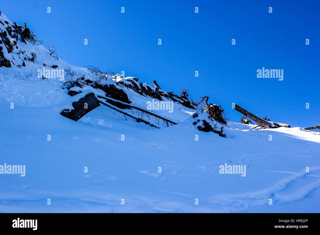 Winterlandschaft - winter wonderland - Stock Image