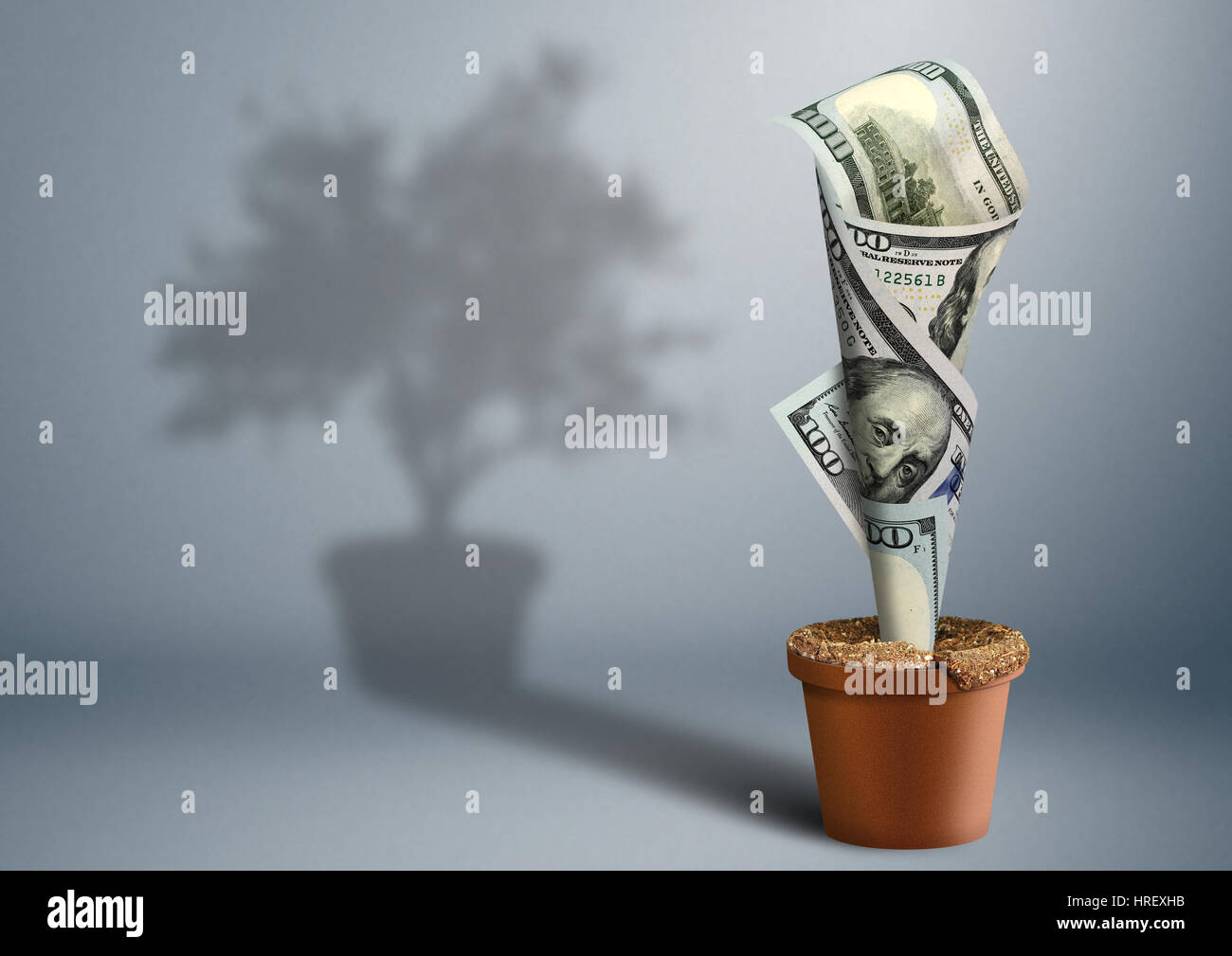finance creative concept, money as tree in pot - Stock Image