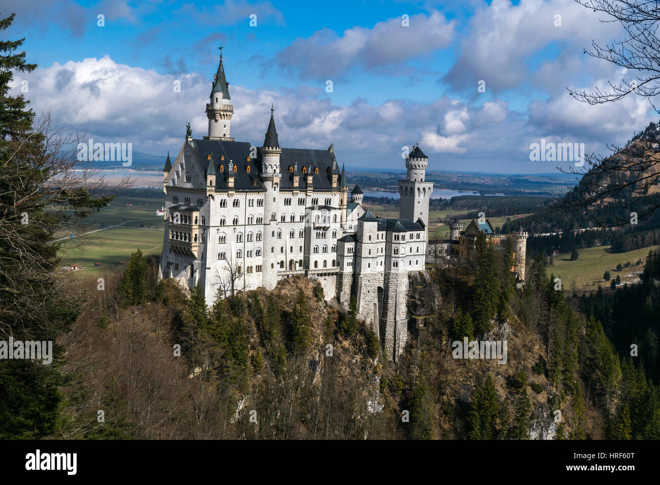 Neuschwanstein Castle in winter landscape, Fussen, Germany, Bavariam Europe - Stock Image