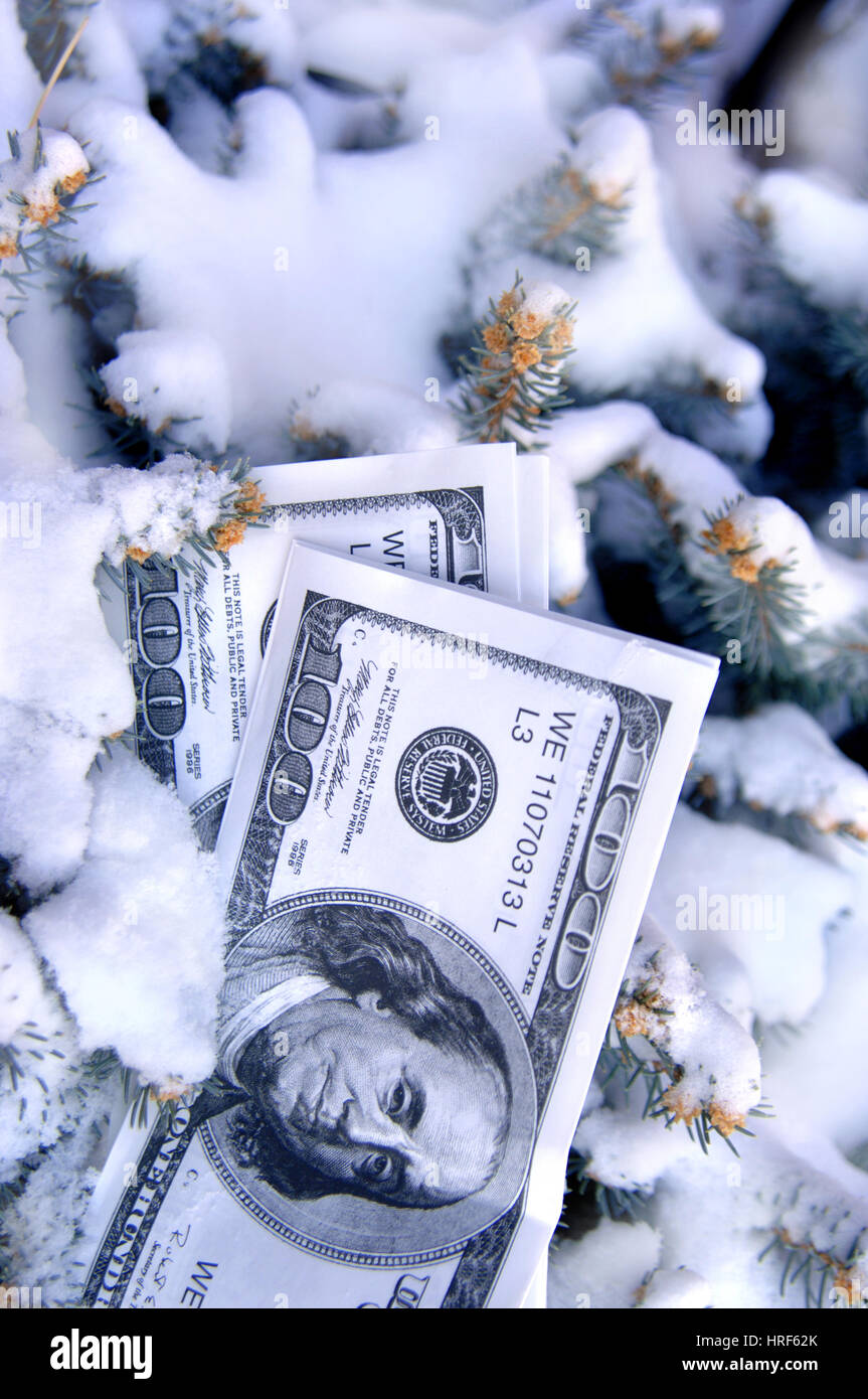 Stack of play money lays buried in snow.  Pine boughs frame stash. - Stock Image
