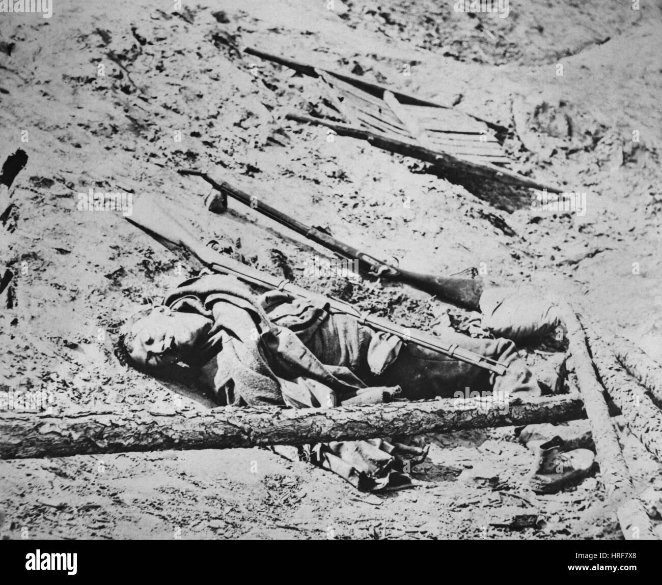Battlefield of Manassas - Stock Image