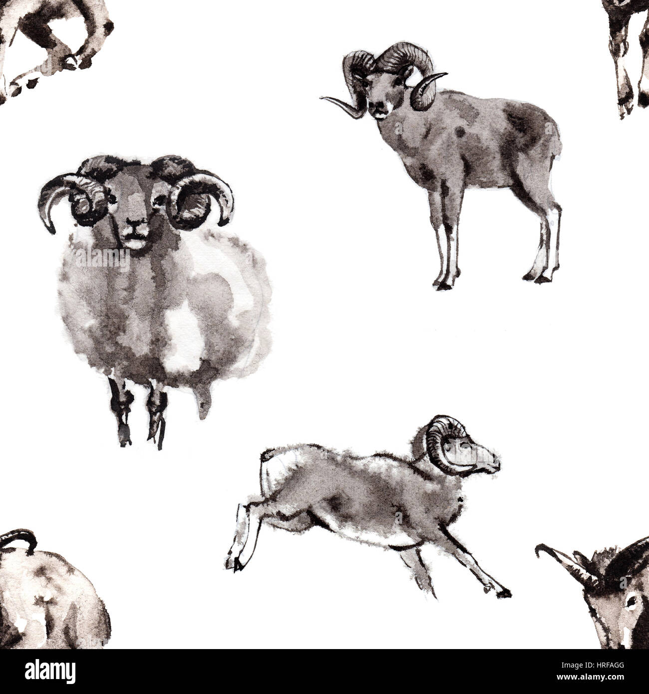 Seamless background texture with 4 images of rams, oriental ink painting isolated on white background. Year of sheep, - Stock Image