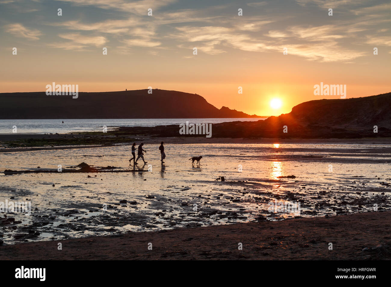 A family with dog in silhouette walking on a beach at Daymer Bay in Cornwall at sunset.  The setting sun reflects Stock Photo