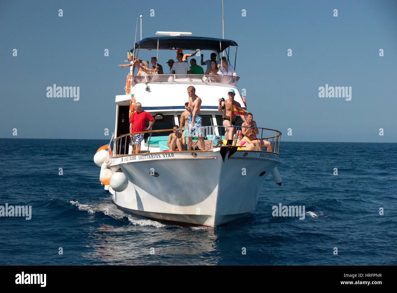 Whale and Dolphin Spotting Trip - Stock Image