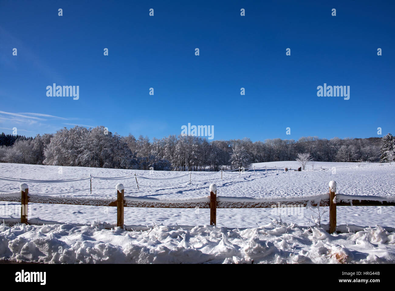 Newly fallen snow on acres and trees surrounded by a farm fence of wood - Stock Image