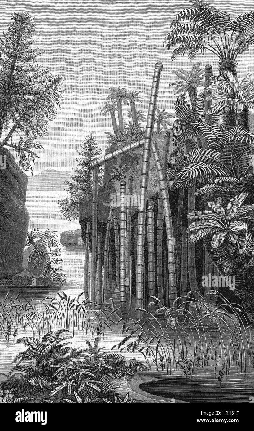 Triassic Period - Stock Image