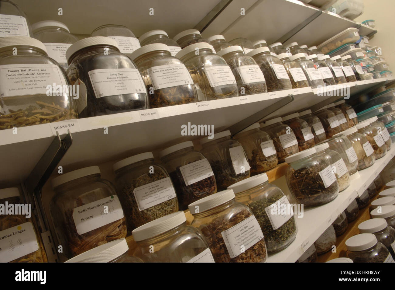 Dried medicinal herbs - Stock Image