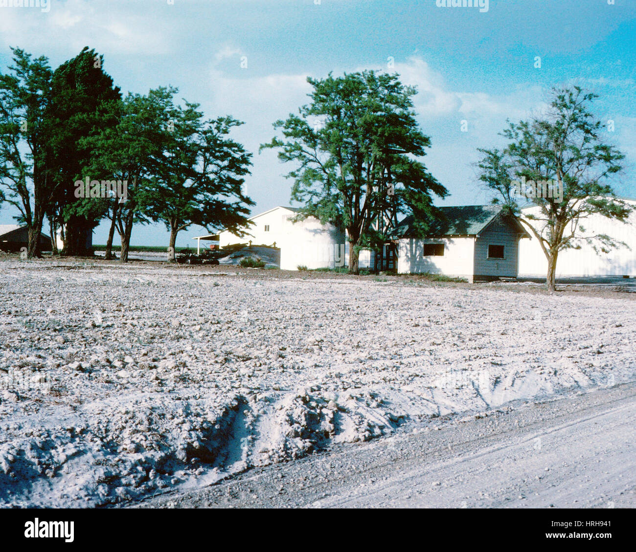 Aftermath, Mount St. Helens - Stock Image