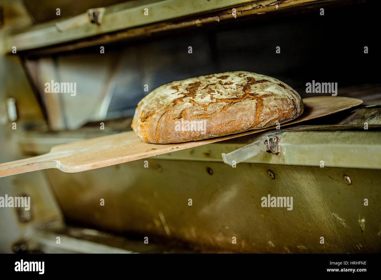 Brot backen, Backstube - baking bread - Stock Image