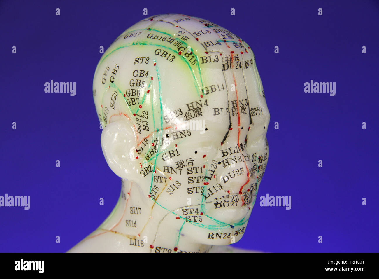 Acupuncture Doll Stock Photos & Acupuncture Doll Stock Images - Alamy