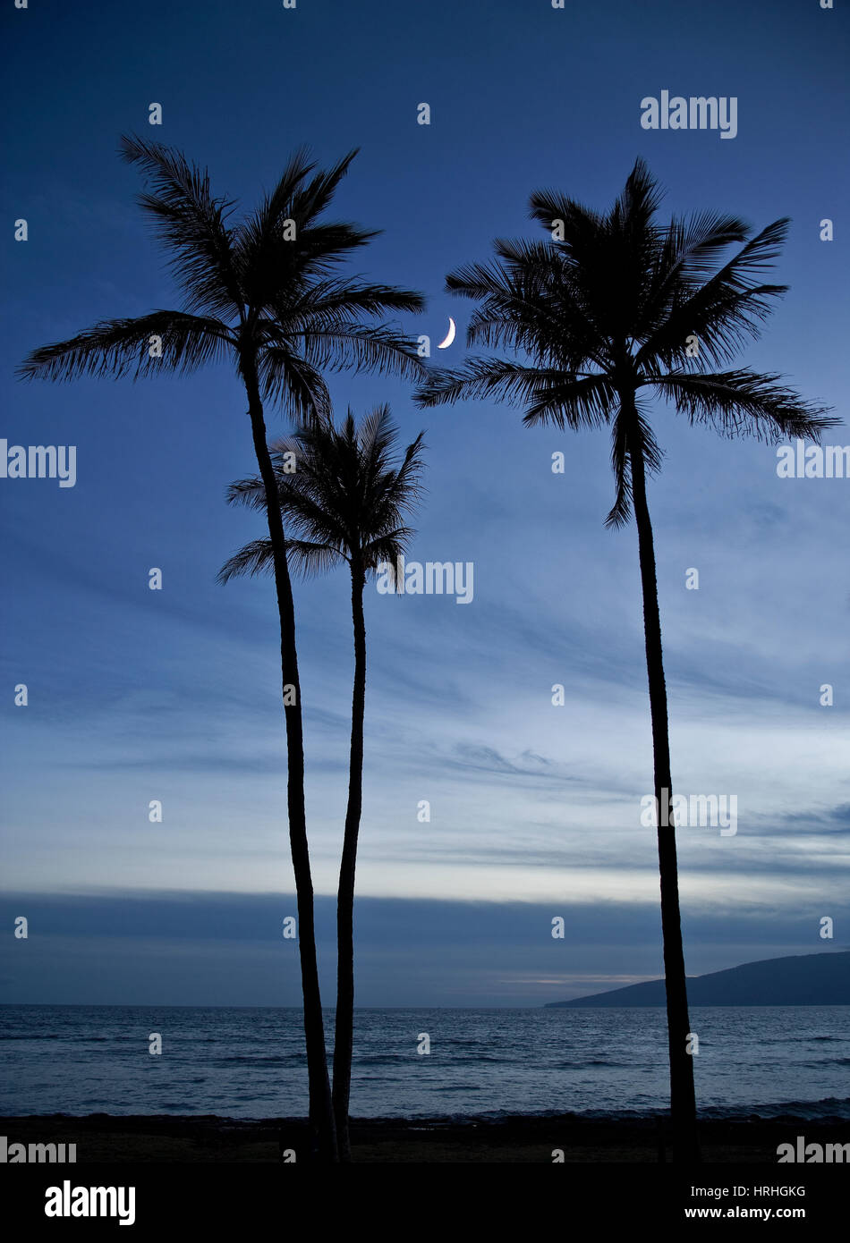 Moon, Three Palms, Maui, Hawaii - Stock Image