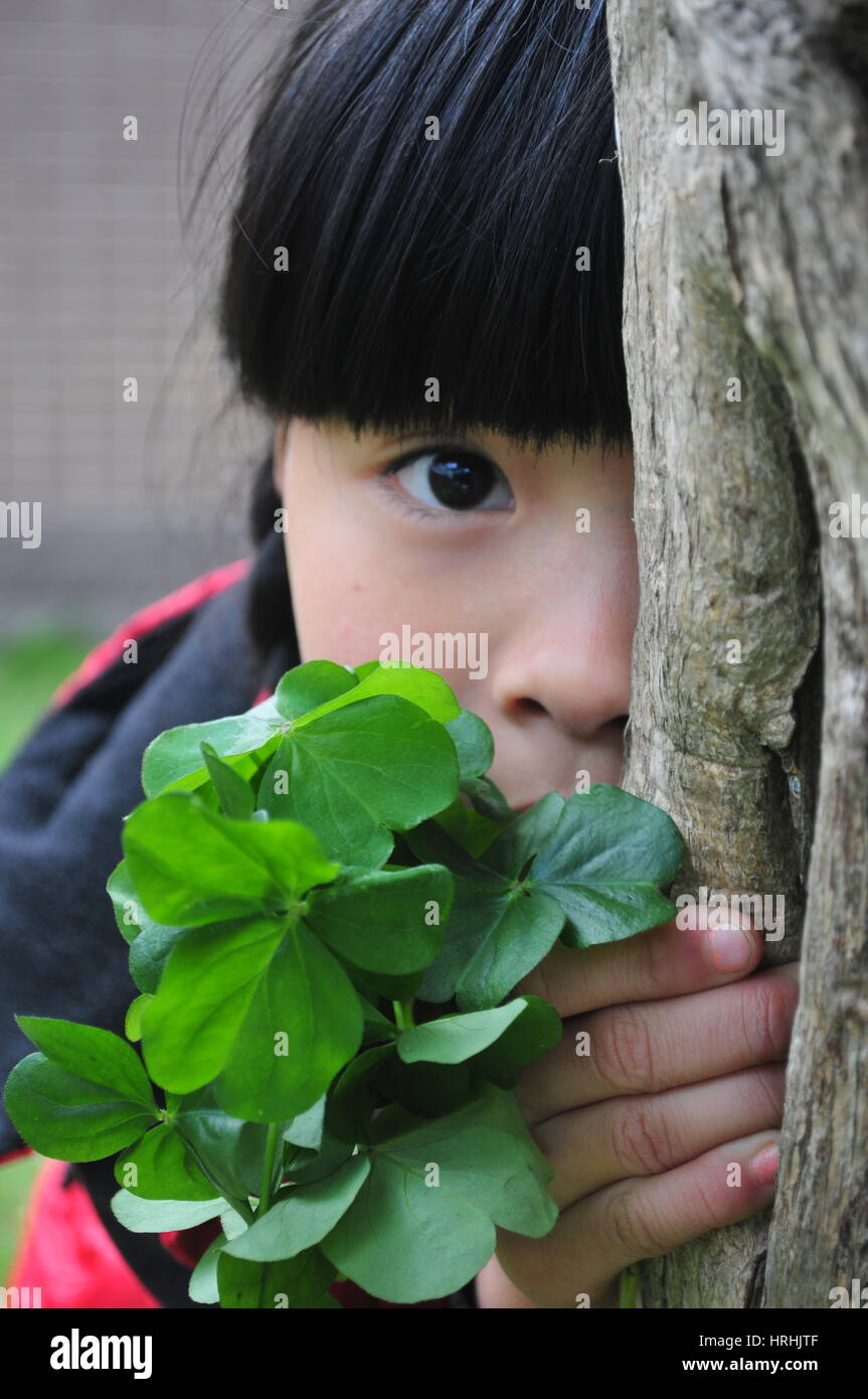 Shy Girl Behind a Tree Playing Hide and Seek - Stock Image
