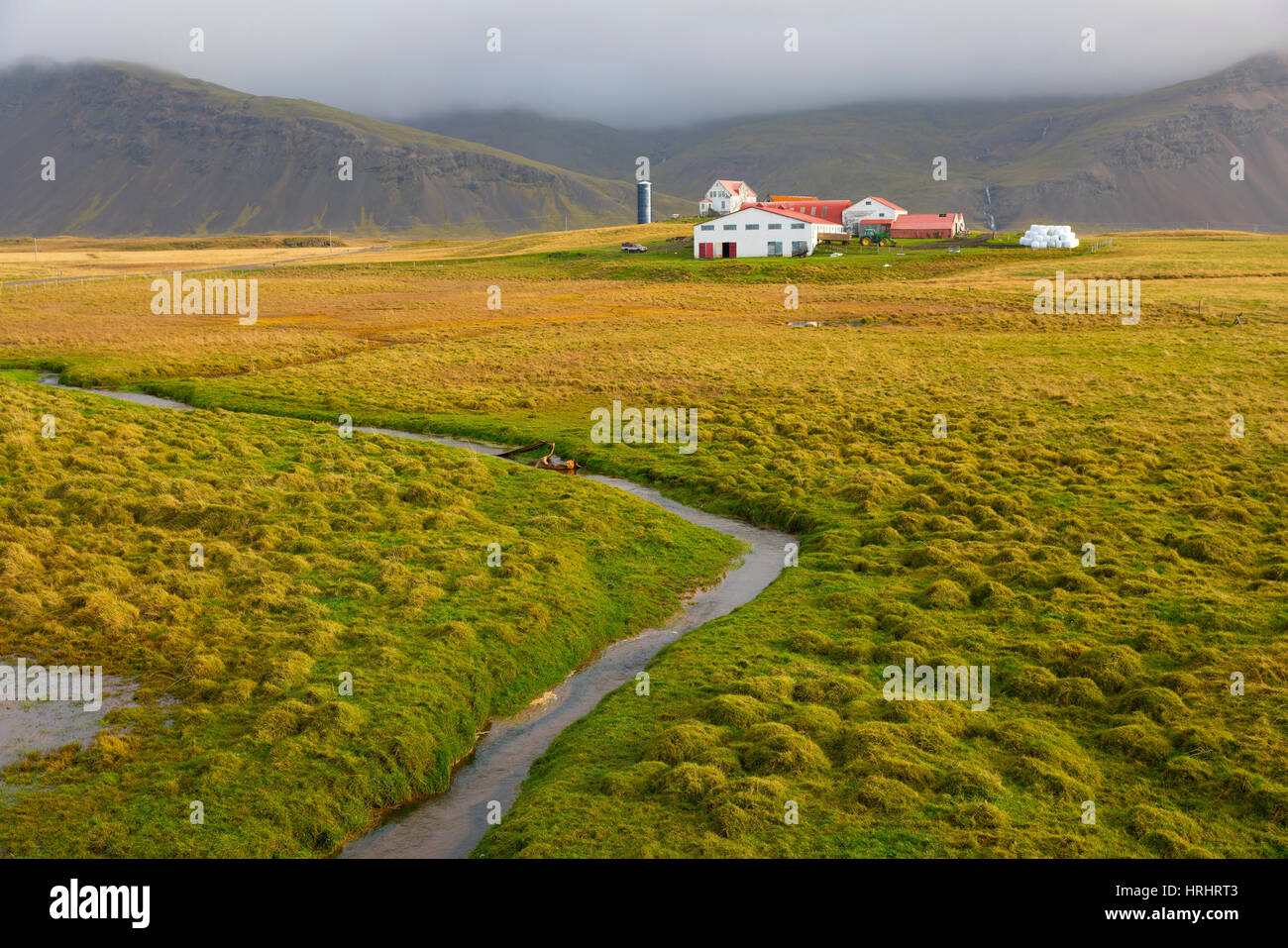 Farm near Hofn, Iceland, Polar Regions Stock Photo