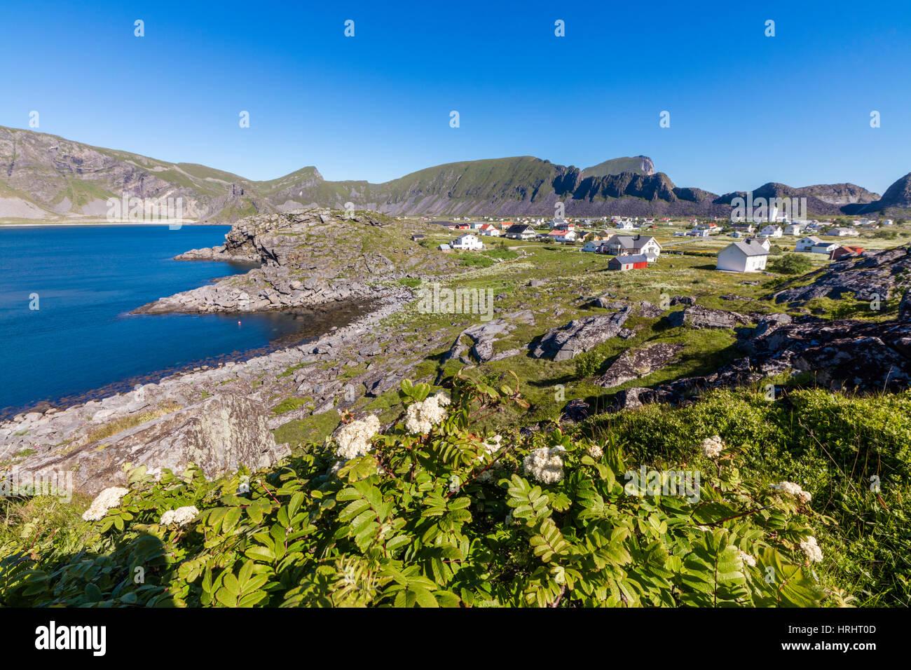 Green meadows frame the village of Sorland surrounded by sea, Vaeroy Island, Nordland county, Lofoten archipelago, - Stock Image
