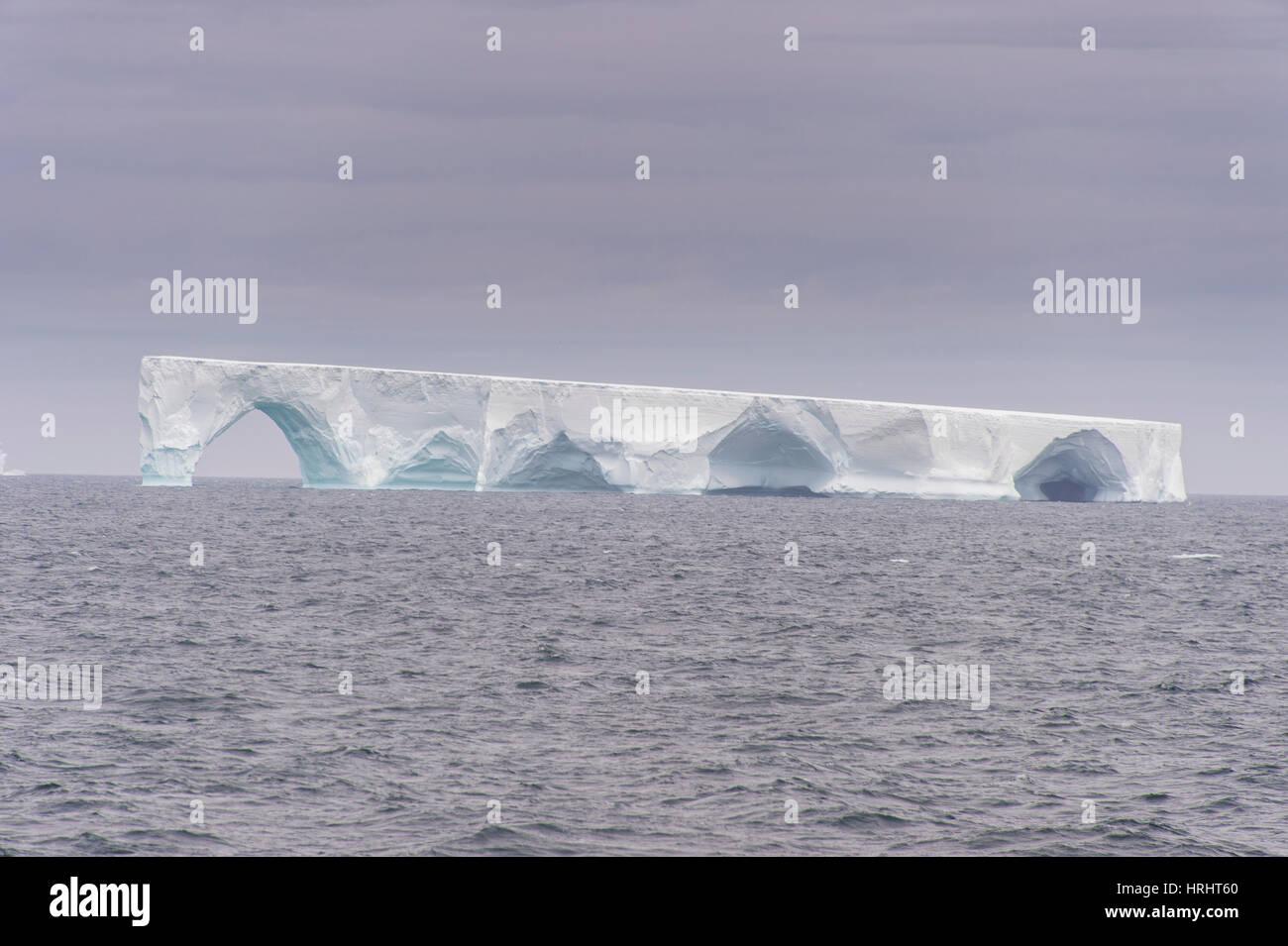 Floating iceberg, Elephant Island, South Shetland Islands, Antarctica, Polar Regions - Stock Image