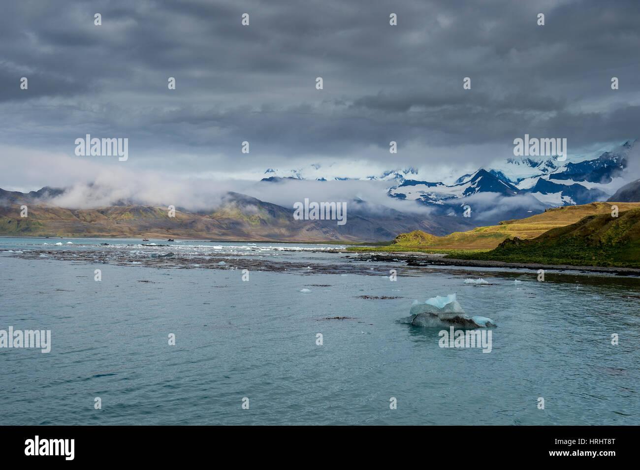 The bay of Grytviken, South Georgia, Antarctica, Polar Regions Stock Photo