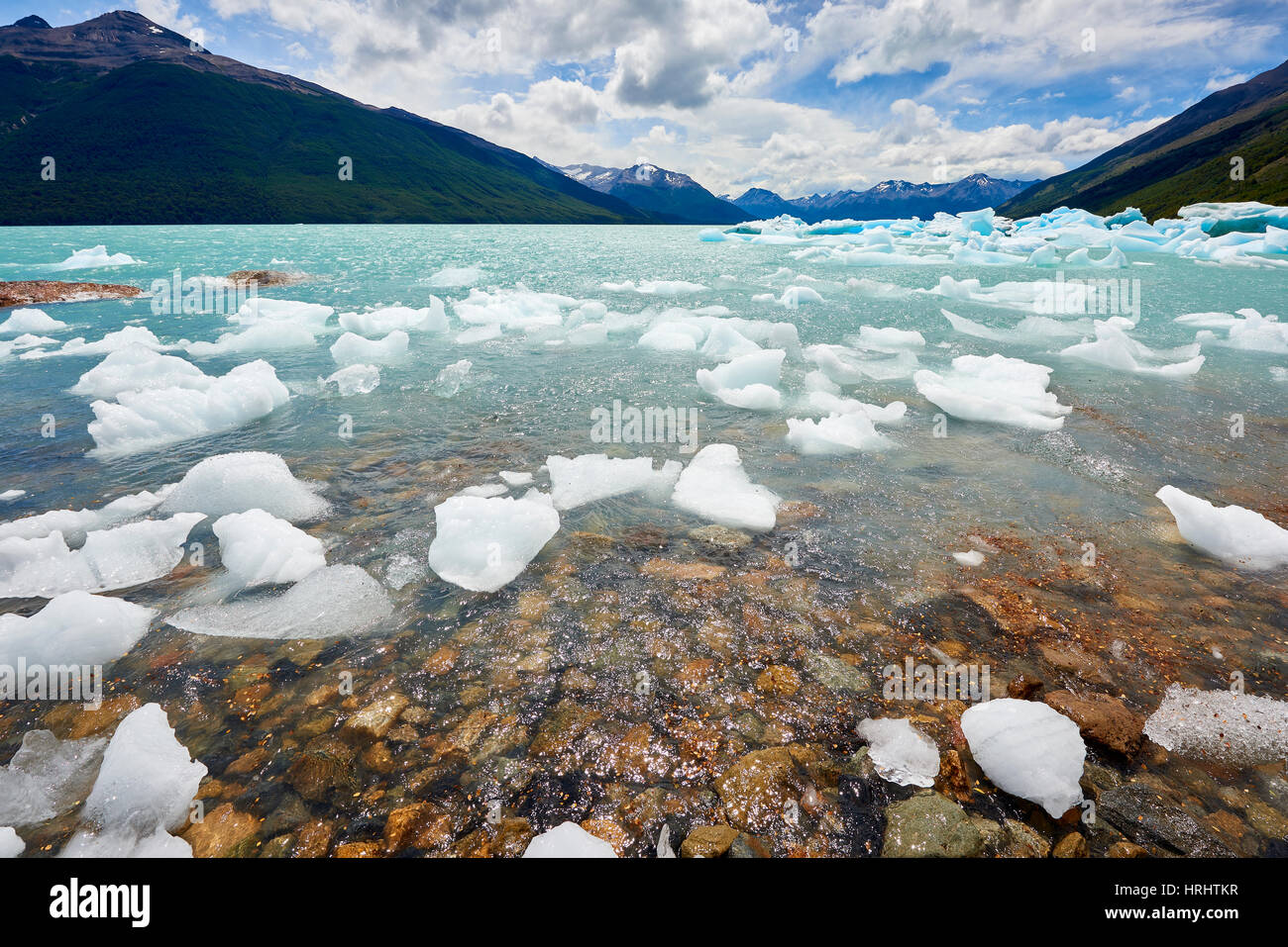 Blocks of ice float and wash ashore, Los Glaciares National Park, UNESCO, Patagonia, Argentina. - Stock Image
