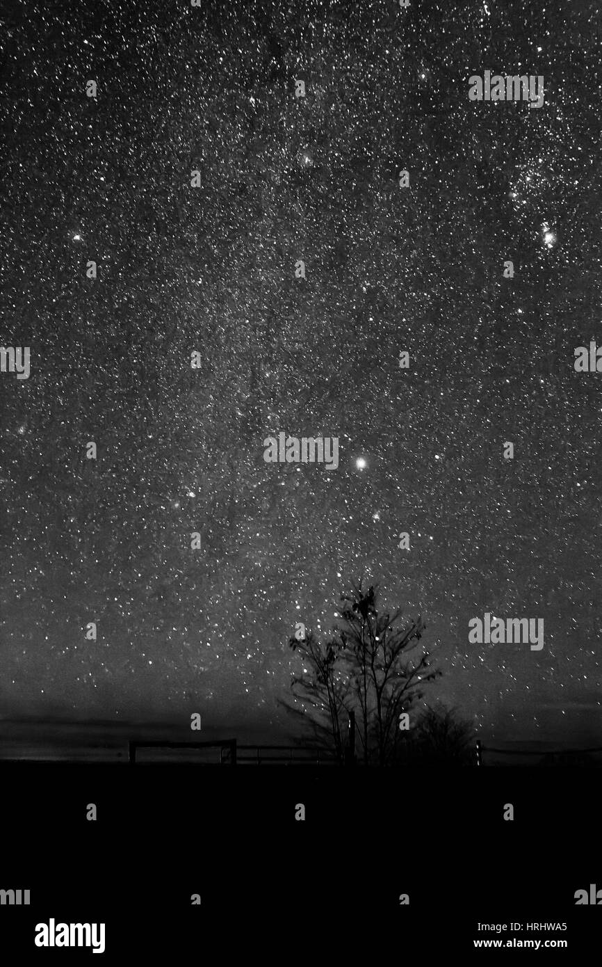 Night sky galaxy - Stock Image