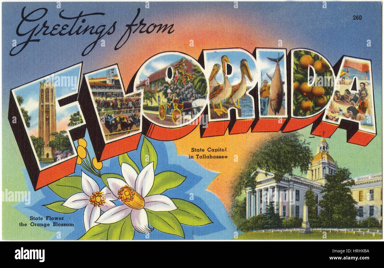 Greetings from postcard stock photos greetings from postcard stock greetings from florida stock image m4hsunfo