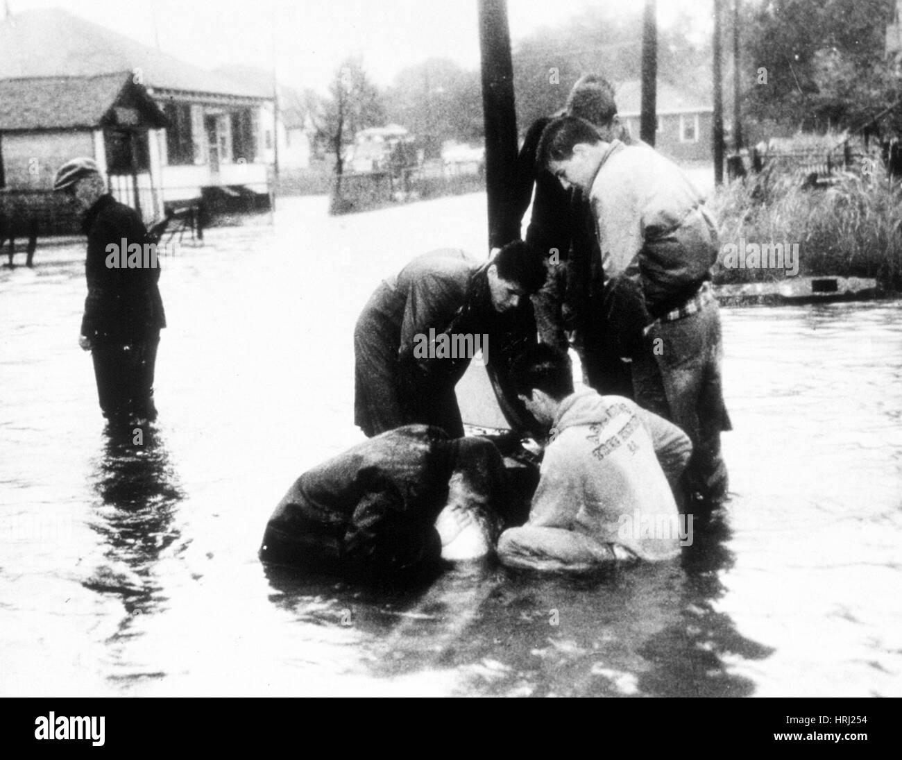 Flood Victim Rescued, 1960 - Stock Image