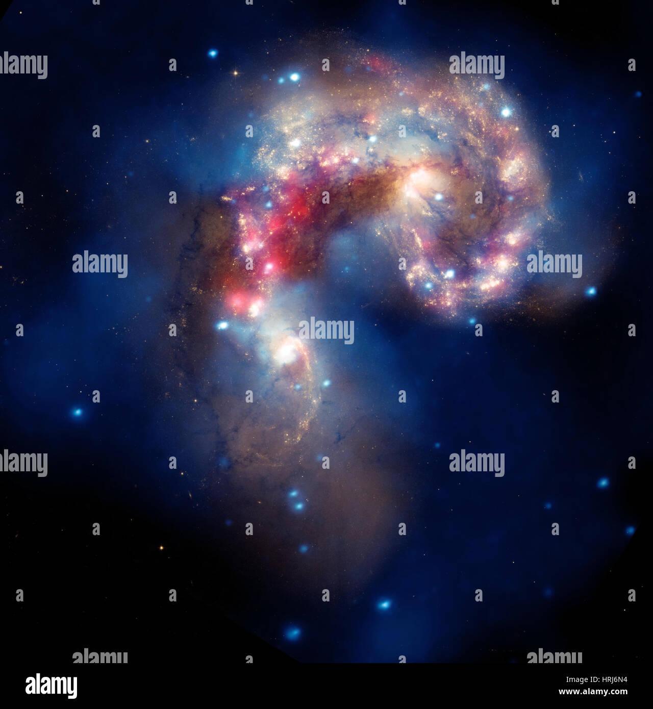NGC 4038/NGC 4039, Caldwell 60/61, Antennae Galaxies - Stock Image